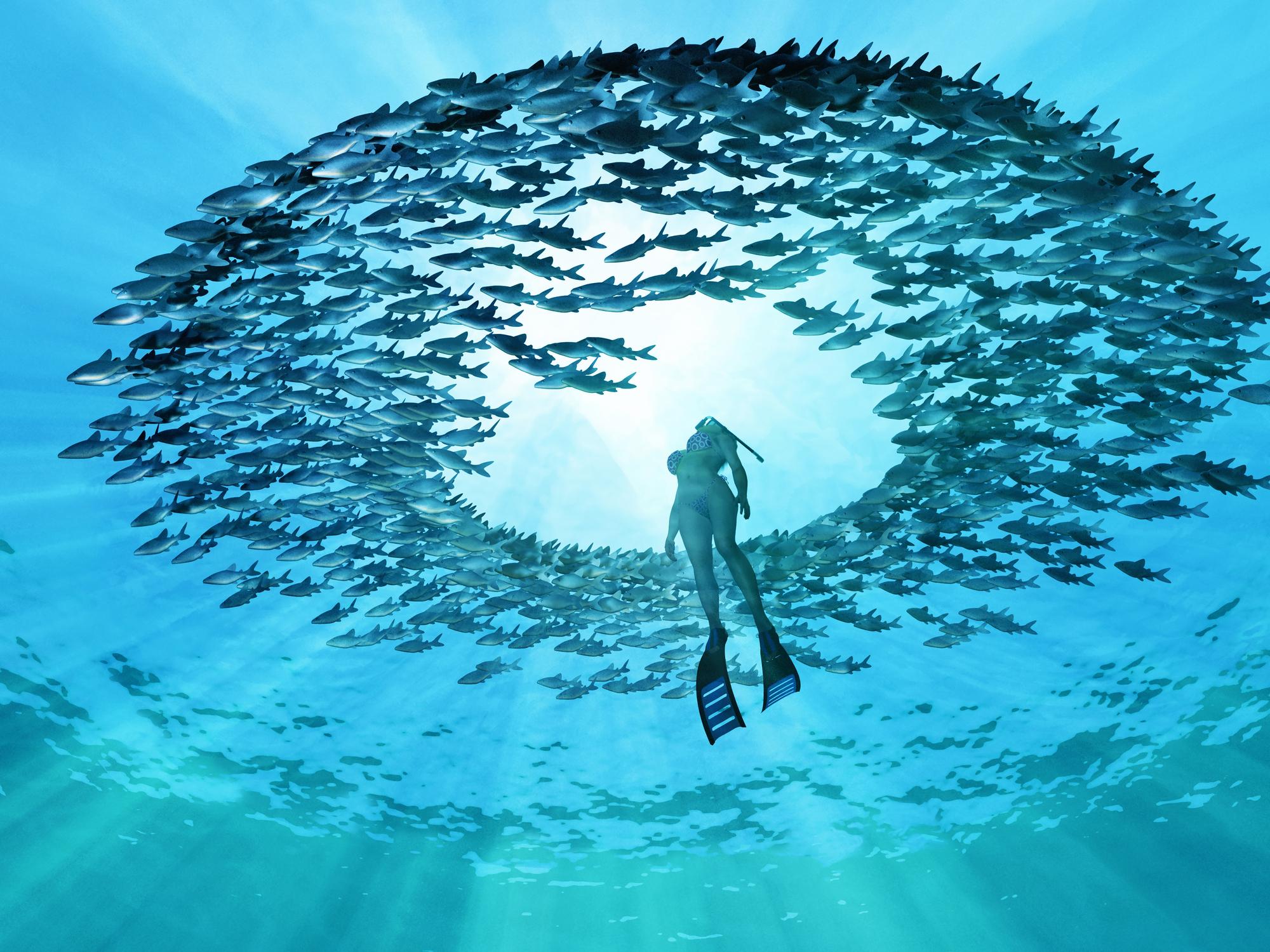 Poznaj moc oceanów! 10 ciekawostek, o których prawdopodobnie nie wiedziałaś!